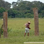 brazilie_7544500b52c2f5.jpg